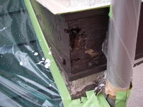 鼻隠し・破風板部分の木部補修工事5