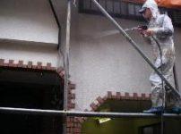 ふじみ野市のお宅で外壁の苔を高圧洗浄機で水洗いしました