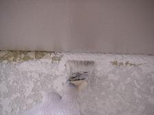 刷毛を使用した中塗り塗装