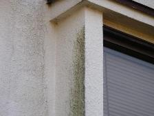 軒下外壁のカビの写真