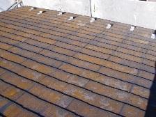 北側屋根はホコリ汚れ、苔の発生でひどく汚れています。
