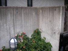 コンクリート塀の汚れ