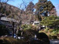 箱根芦の湯松坂屋本店のお庭