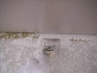 塗装|埼玉はナイガイセルフへ|中塗・上塗り施工価格|実例写真4